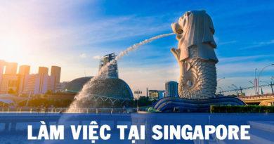 Những điều cần biết về việc làm dành cho sinh viên sau khi du học Singapore